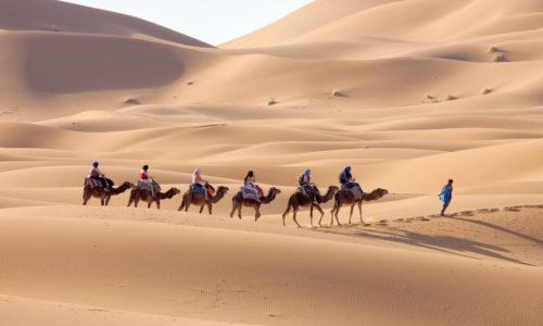 camelride_merzouga_dunes_5